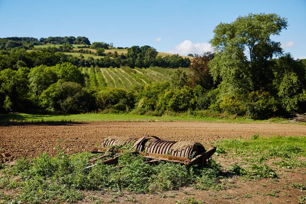Bramley & Gage landscape