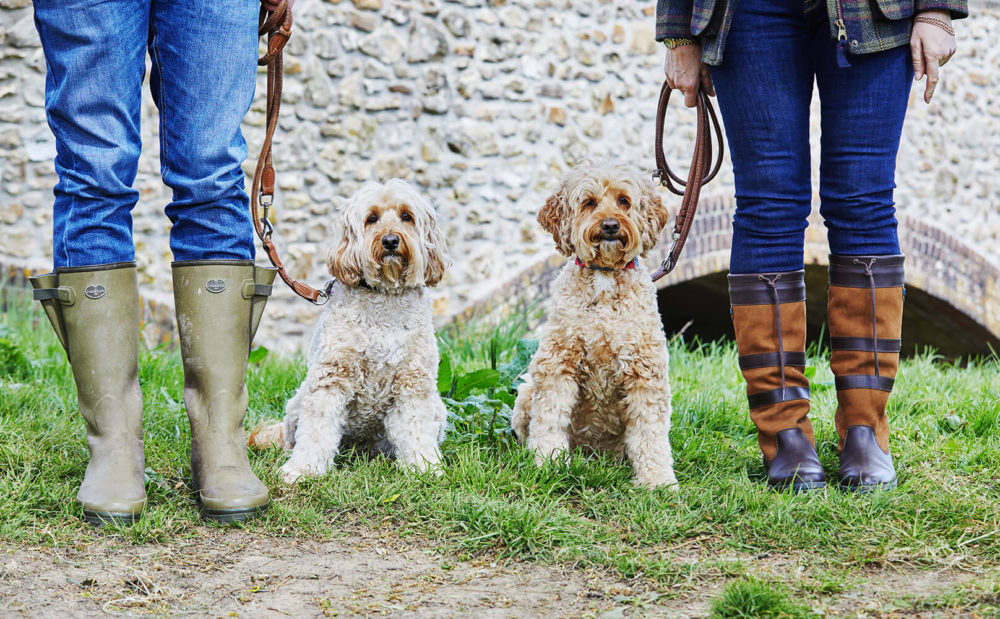 Wellies and dogs